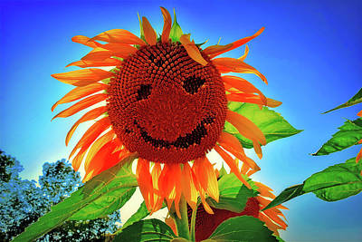 Photograph - The Smiling Sunflower by Pixabay