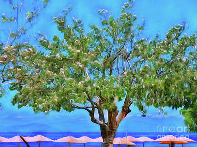 Art Print featuring the photograph The Smiling Tree Of Benitses by Leigh Kemp