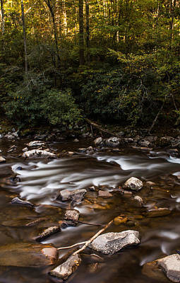 Photograph - The Smoky Mountain Stream by Shelby Young