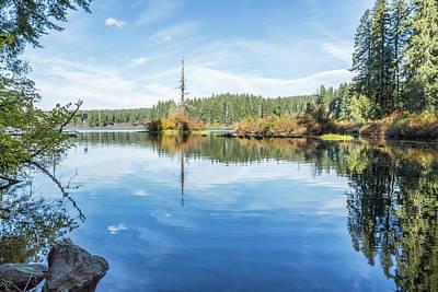 Photograph - The Snag At Clear Lake by Belinda Greb