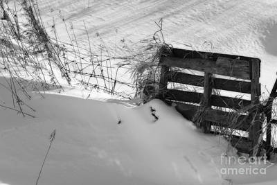 Photograph - The Snow Gate  by Cathy  Beharriell