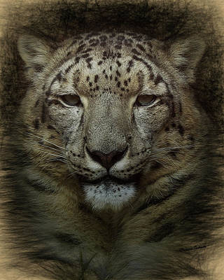 Digital Art - The Snow Leopard by Ernie Echols