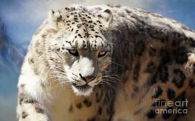 Digital Art - The Snow Leopard by Suzanne Handel