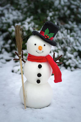 Photograph - The Snowman On Snowy Ground  by William Lee