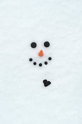 Photograph - The Snowman by Tim Gainey