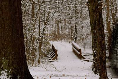 Photograph - The Snowy Path by Jenny Regan