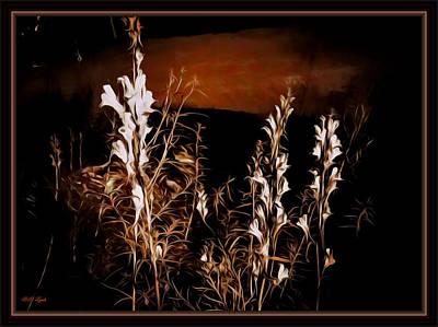 The Soft Glow Of Wild Flowers Art Print by Debra Lynch
