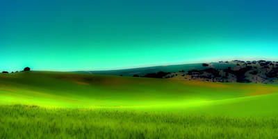 Digital Art - The Soft Rolling Hills Of The Palouse by David Patterson