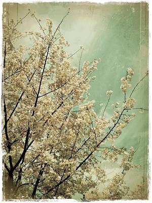 The Softness Of Spring Art Print