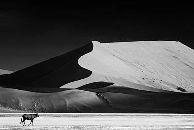 Deserts Photograph - The Solitary by Mathilde Guillemot