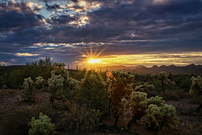 Photograph - The Sonoran At Sunrise  by Saija Lehtonen
