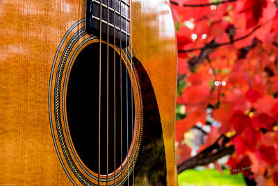 Photograph - The Sound Of Autumn by Mick Anderson