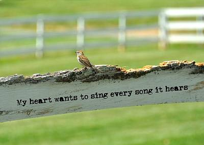 The Sound Of Music Quote Art Print by JAMART Photography