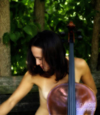 Cellists Photograph - The Sound Of Nature  by Steven Digman