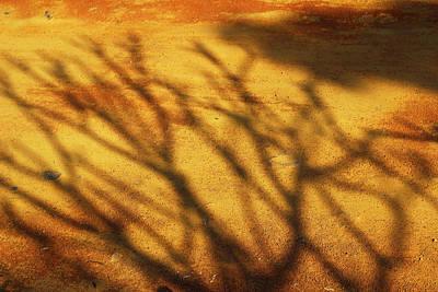 The Soundlessness Of Nature Art Print by Prakash Ghai