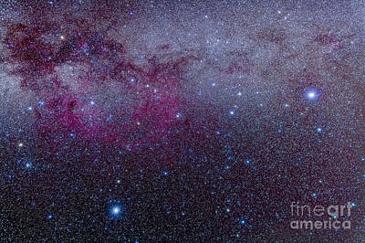 Blue Giant Star Photograph - The Southern Milky Way by Alan Dyer