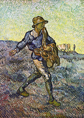 Agriculture Painting - The Sower, After Millet by Vincent van Gogh