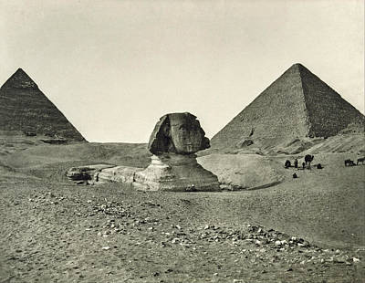 Selling Buying Online Photograph - The Sphinx And The Pyramids by Adolphe Braun