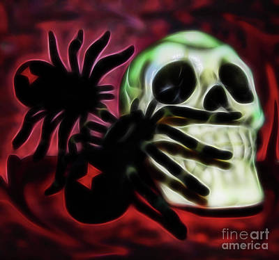 Photograph - The Spider's Skull by D Hackett