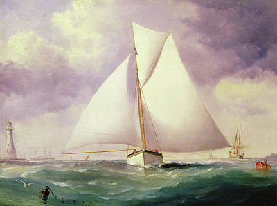 The Spinnaker Sail Art Print by Nicholas Matthews Condy