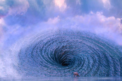 Reptiles Royalty-Free and Rights-Managed Images - The Spiral by Betsy Knapp