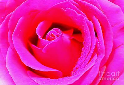 Pink Flower Photograph - The Spirit Of Pink by Krissy Katsimbras
