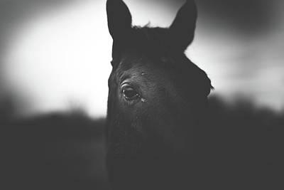 Photograph - The Spirit by Shane Holsclaw