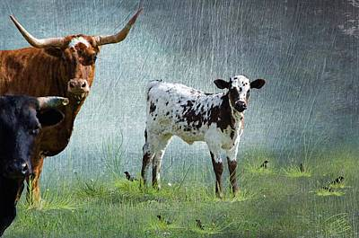 Breed Digital Art - The Spotted Calf by Debra Baldwin