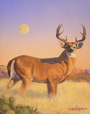 The Stag Art Print by Howard Dubois