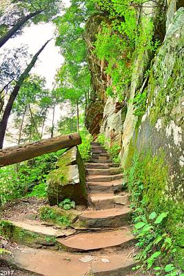 Photograph - The Stairs At Rock House Hocking Hills Ohio by Lisa Wooten