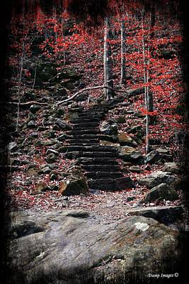 Photograph - The Stairs We Climb by Wesley Nesbitt