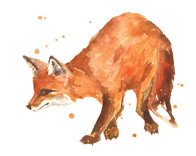 Foxes Painting - The Stalker by Alison Fennell