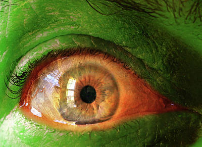 Photograph - Green Stare by Christopher McKenzie