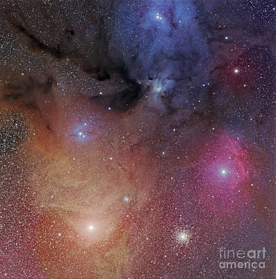 The Starforming Region Of Rho Ophiuchus Art Print by Phillip Jones