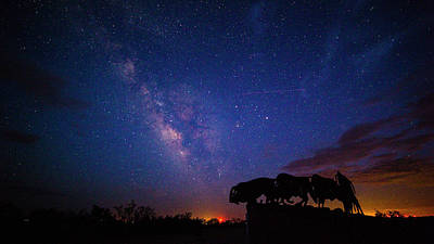 Bison Photograph - The Stars At Night Are Big And Bright by Stephen Stookey
