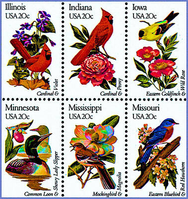 The State Birds And Flowers Stamps Print by Lanjee Chee