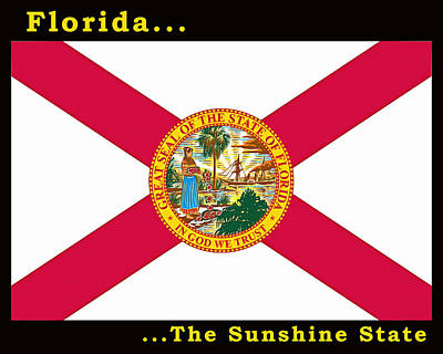 Painting - The State Flag Of Florida by Floyd Snyder