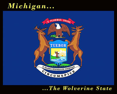Painting - The State Flag Of Michigan by Floyd Snyder