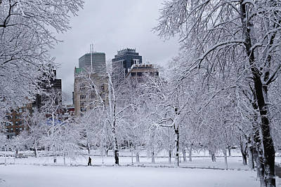 Photograph - The State Street Building Through The Snowy Trees Boston Common by Toby McGuire