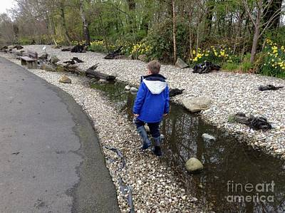 Photograph - The Stepping Stones 2 by Joan-Violet Stretch