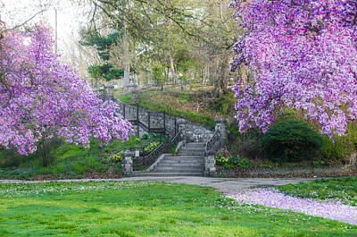 Cherry Blossoms Digital Art - The Steps At Lemon Hill - Philadelphia by Bill Cannon