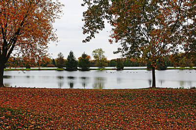 Photograph - The Stillness Of Autumn by Debbie Oppermann