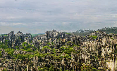 Photograph - The Stone Forest by Robert Hebert