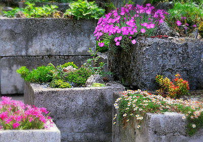 Photograph - The Stone Planters by Diana Angstadt