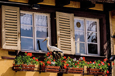 Vineyards Of Alsace Photograph - The Stork Has A Delivery - Colmar France by Jon Berghoff