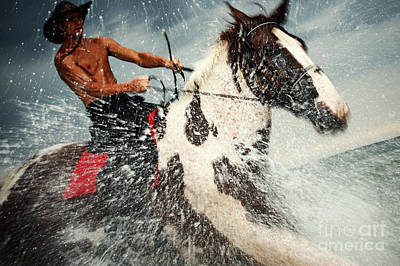 Photograph - The Storm Horse by Dimitar Hristov