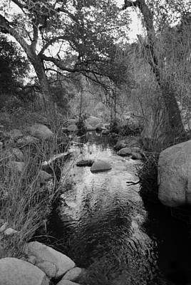 Photograph - The Stream by Bransen Devey