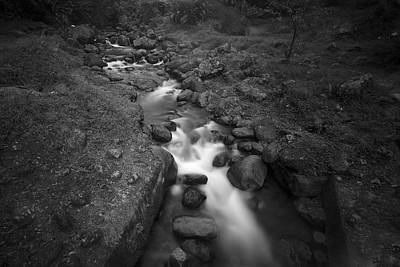 Photograph - The Stream In Martinique by Prashant Meswani
