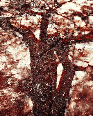 Photograph - The Strength Of Africa - Shadow Tree Nr 1 by Menega Sabidussi