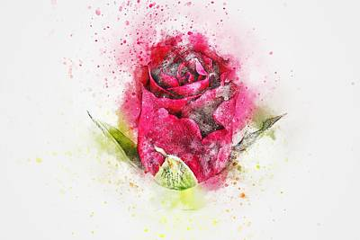 The Style Of A Rose Art Print